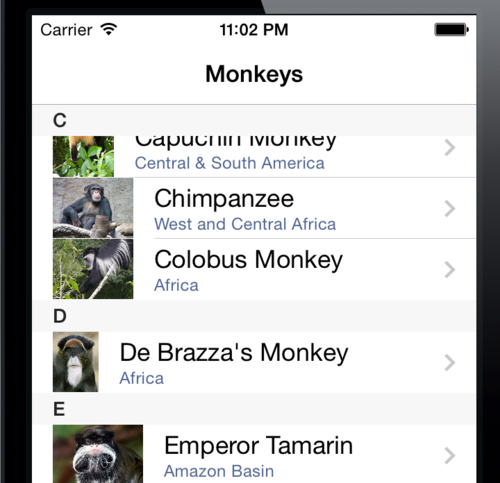 Enhancing Xamarin.Forms ListView With Grouping Headers