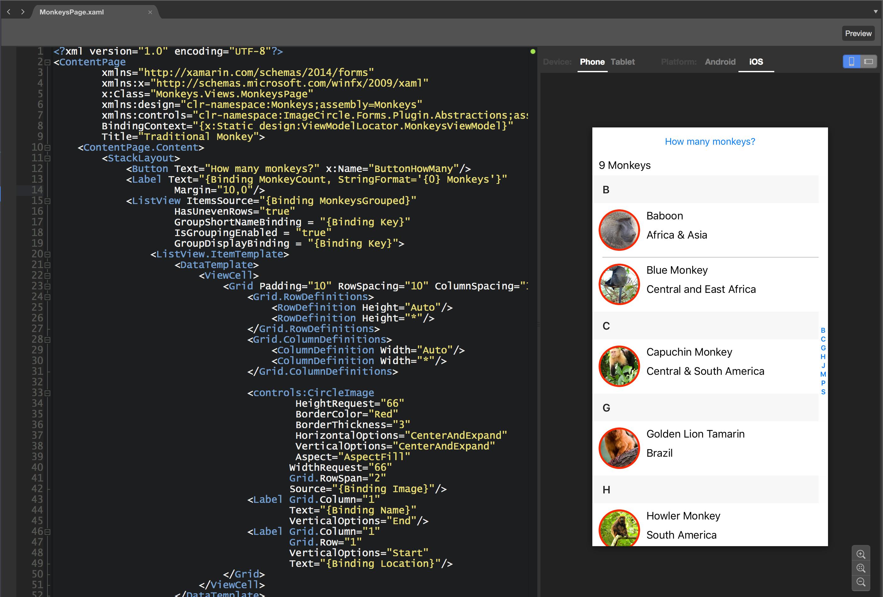 Xamarin Forms XAML Previewer Design Time Data - James Montemagno